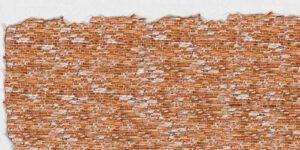 Bautrocknung: rote Ziegelsteinmauer